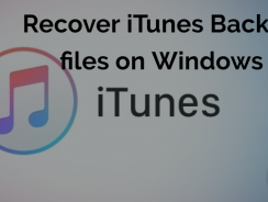 How to View and Recover iTunes Backup files on Windows?